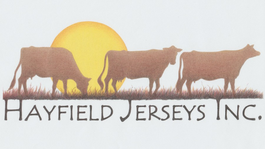 Hayfield Jerseys Inc.